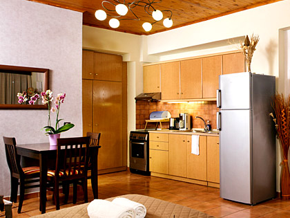 Kitchen rooms of AnnaView Apartments